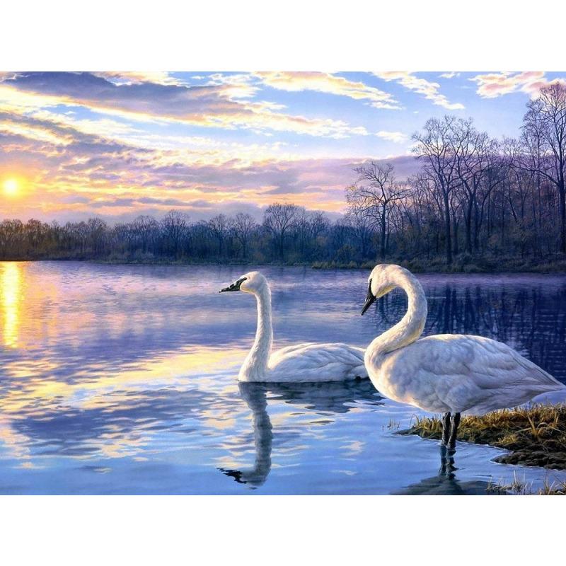 "Купить оптом Раскраски по номерам на картоне ""Лебеди"" (kit ..."